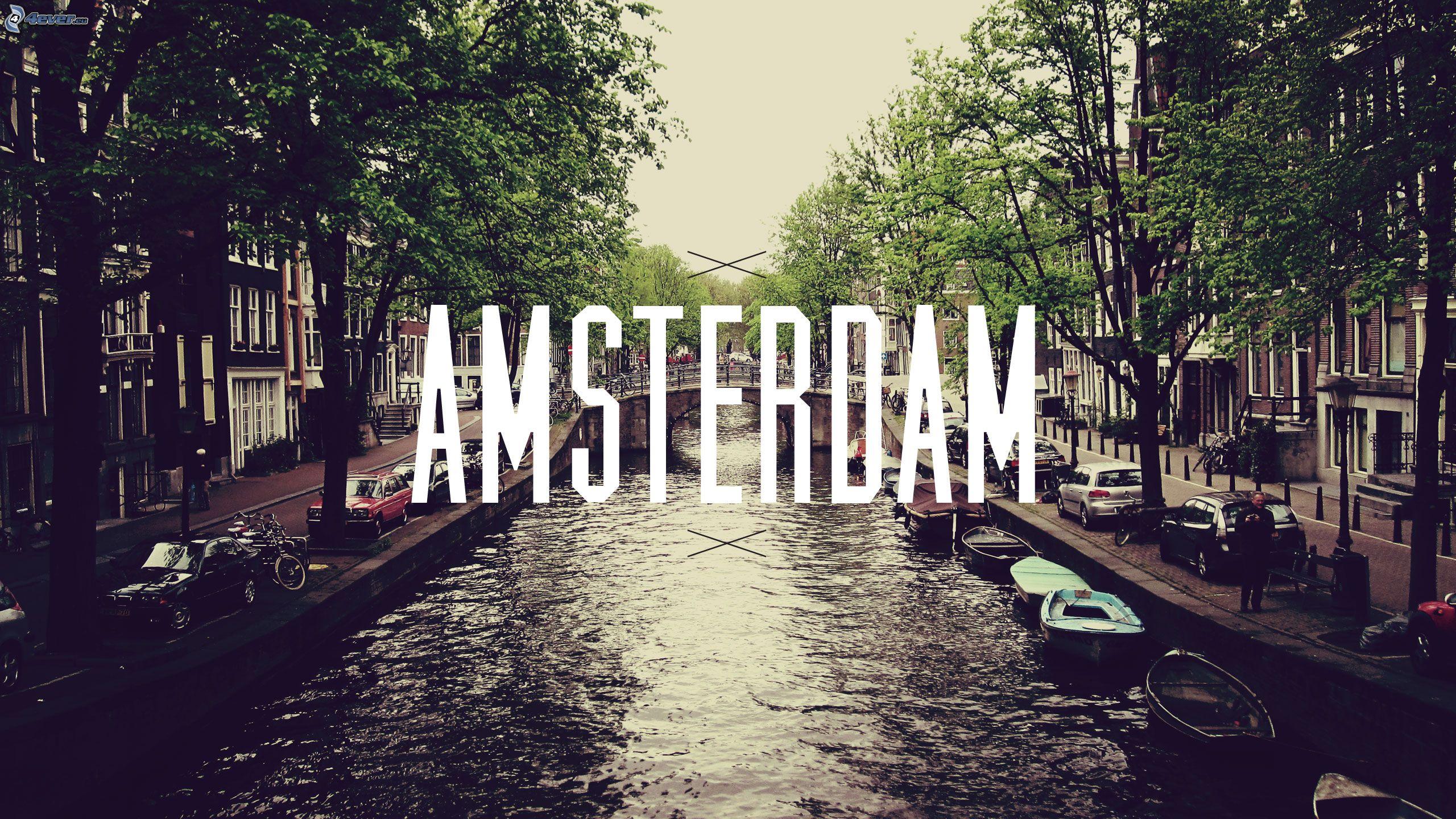 Amsterdam Quotes Travel Music Inspiration Amsterdam  100 Days Of Sunshine