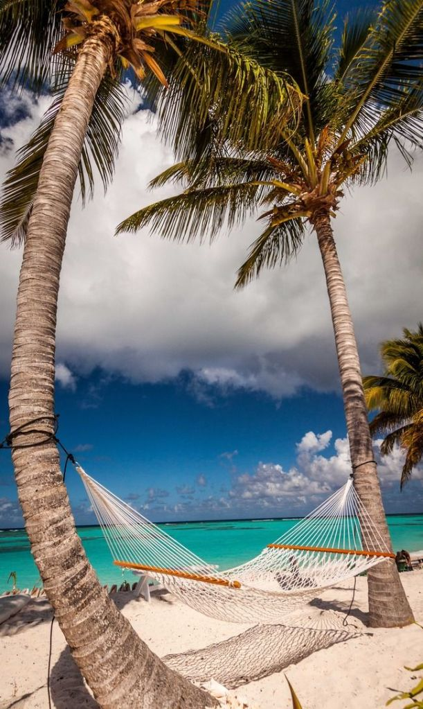 Anegada, British Virgin Islands!