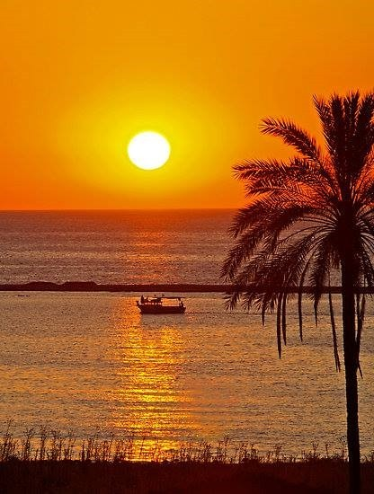 CY sunset