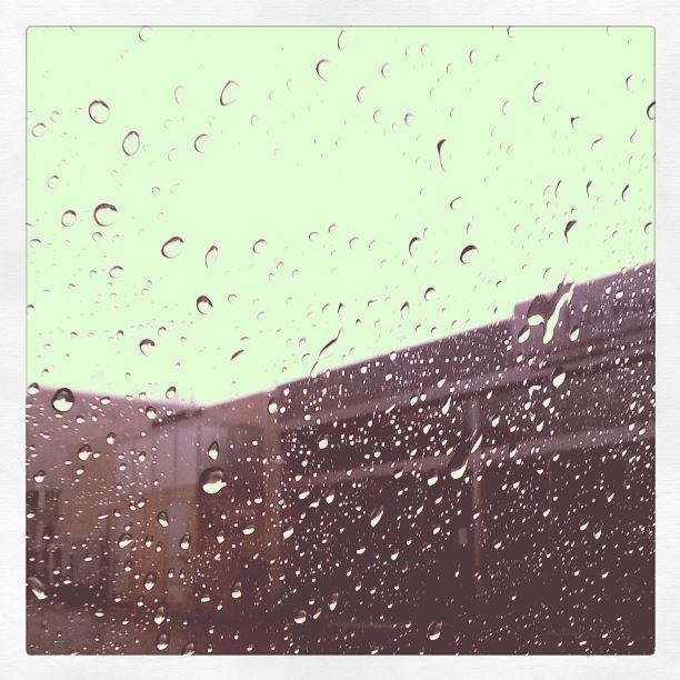 rainy nov day