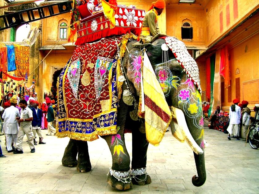 Amazing India 15